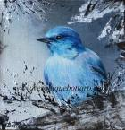 Alberta Blue Bird