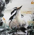 Downy Woodpecker Fem.